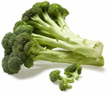 One Head of Organic Broccoli - Fresh